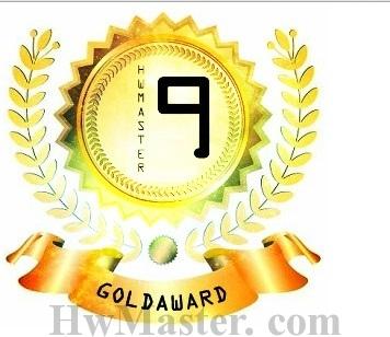 Logo voto 9